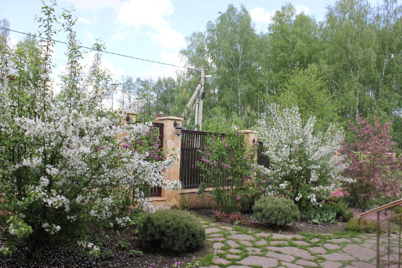 Сад Сенино - весна