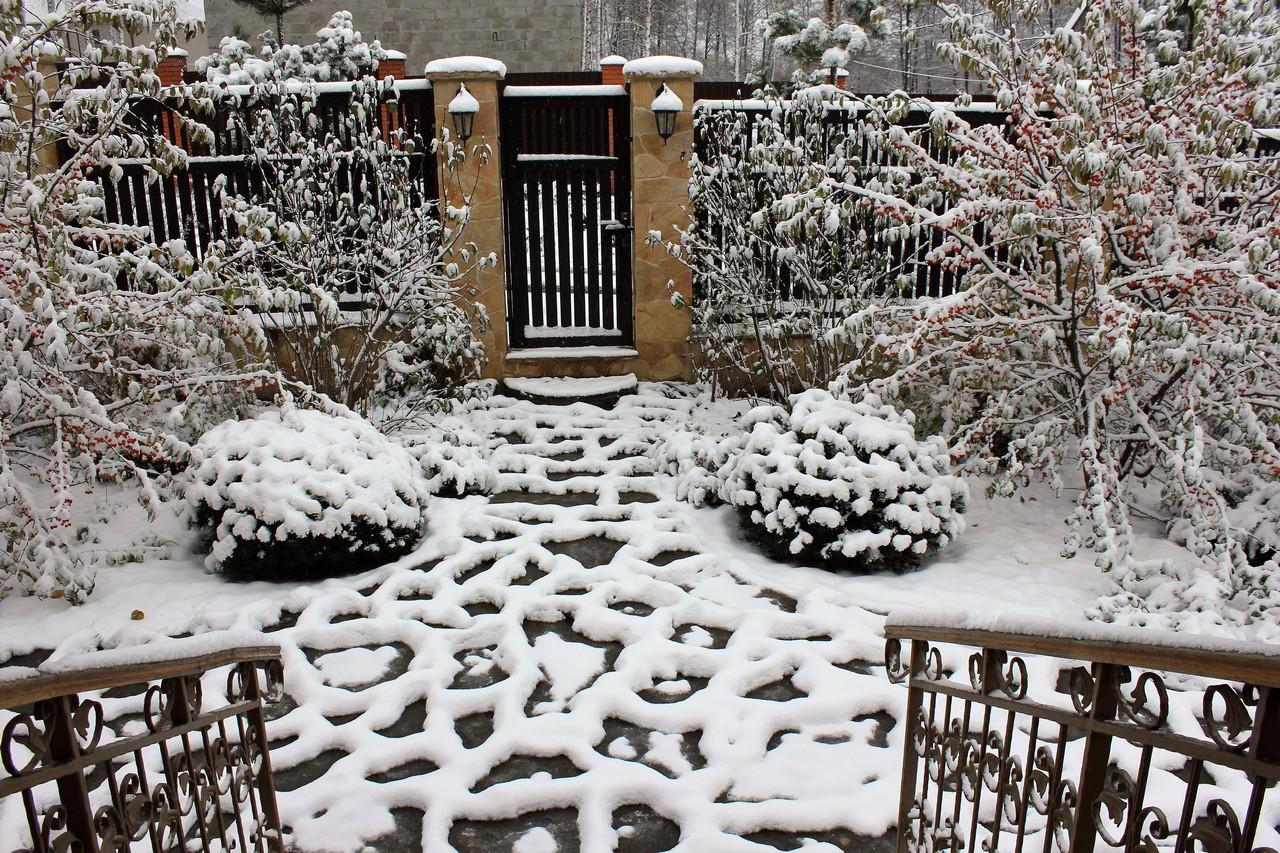 Сад Сенино - первый снег
